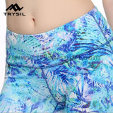 최신 판매 고품질 여자 체조 착용 전장 각반
