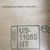 madeira compensada decorativa do vidoeiro do tratamento térmico de 1220*2440mm