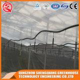 산업 직류 전기를 통한 강철 프레임 유리 온실