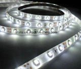 Alto indicatore luminoso di striscia di Istruzione Autodidattica IP65 2835 LED