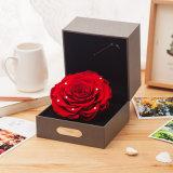 Presente natural Handmade da flor de Rosa para a lembrança