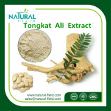 Polvo del extracto del extracto de Tongkat Ali/del extracto 200 1/Tongkat Ali de la raíz de Tongkat Ali