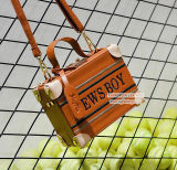 Heißer Form-Mädchen-Handtaschen-berühmter EntwurfBrown PU-Kasten-Beutel-kleine Schulter-Beutel Sy8154