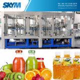 Jus/thé/machine de remplissage de boissons/installation de mise en bouteille chaudes