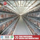 Горячая клетка цыпленка бройлера сбывания для разных видов конструкции дома птицефермы