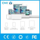 iphone를 위한 플라스틱 일반적인 충전기 또는 이동 데이터 케이블