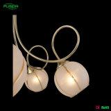 Indicatori luminosi Pendant decorativi, lampadario a bracci caldo di vendite per la casa