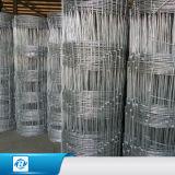 Hochleistungszink-Beschichtung-örtlich festgelegter Knoten gesponnener Draht-Bereich-Spiel-Zaun