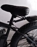 Crucero eléctrico de la nieve Fat Bike / Rough Rider Fat Bike con Ce