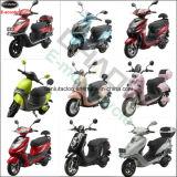 """trotinette"" elétrico de 800W 1000W 1200W que compete a motocicleta"