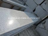 Серые слябы гранита G602 большие