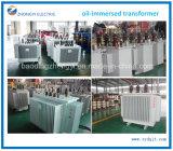China-Toroidal Wicklungs-ölgeschützter Verteilungs-Transformator-Preis