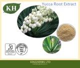 Haute qualité extrait de racine Natural Plant de yucca saponines