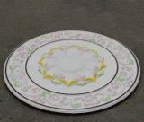 Dekorativer Polyurethan leichte PU-Decke Rose/Medaillon Hn-023