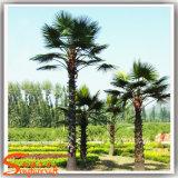 2,015 Dernières Argent artificielle Palm Tree plante décorative