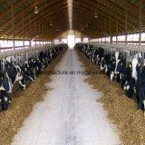農場のために取除かれる金属牛