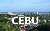 Lianyungang à Cebu Express par l'océan FCL