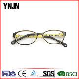 Ynjn Les plus populaires Lunettes de lunette de lunettes modèle OEM (YJ-G81128)