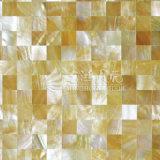 ギャップのない黄色いリップのモップのシェルの正方形のモザイク
