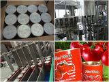 トマトソース、トマト・ケチャップ、トマトのりのための機械装置を処理するトマト