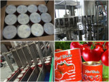 Tomatoes Processing Machinery for Tomato Sauce, Tomato Ketchup, Tomato Paste