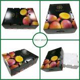 신선한 과일을%s 무거운과 지구 물결 모양 화물 박스