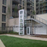 Elevatore domestico verticale per dell'interno/esterno