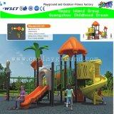 Neues Design Outdoor Children Playground mit Hausdach (M15-0016)