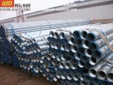BS1387 Galvanized Steel Pipe mit Screw und Sockets