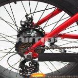 Bici elettrica di montagna della strada della gomma grassa elettrica della bici con la E-Bici del motore 500W