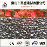 중국 공장 직접 폴리탄산염 건축재료를 위한 다이아몬드에 의하여 돋을새김되는 장 PC 장