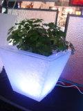 La lumière jusqu'Pot de fleur (RBLV-0907)