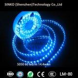 높은 가벼운 방수 IP65 SMD 5050 DC12V 14.4W RGB LED 지구