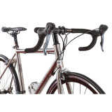 Novo modelo de velocidade 21 700c esporte corrida de bicicletas de aluguer (FP-RB-S01)