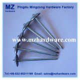 "2-1 / 2 ""Galvanized Umbrella Head Roofing Nail with Rubber Washer"