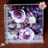 2017 cadres acryliques de Rose de cadre de fleur du modèle le plus neuf