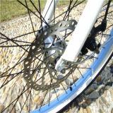 Pedal unterstützte Strand-Kreuzer-Fahrrad Rseb-1215