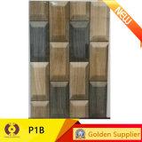 mattonelle di ceramica della parete del materiale da costruzione di 200X300mm Foshan (P16B)
