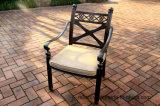 標準的な庭の静止した食事の椅子の家具