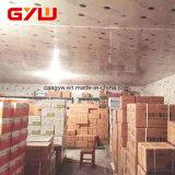 Contenitore della cella frigorifera per il gelato della frutta in Cina