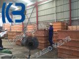 Pn40 Dn200 GOST/API/DIN ha lanciato la valvola a saracinesca dell'acciaio inossidabile