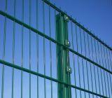 [بفك] يكسى مسطّحة مزدوجة [وير فنس] صلبة لوح شبكة سياج