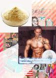 Aufbauendes Steroid Hormon Dianabol Puder für Karosserie Buliding