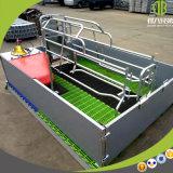 Pluma de parto galvanizada alta calidad de parto durable de los embalajes para la venta