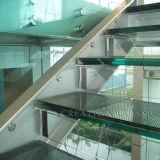 건축을%s 명확한 착색된 PVD 박판으로 만들어진 유리