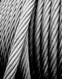 명확한 PVC 입히는 스테인리스 철사 밧줄 7X7