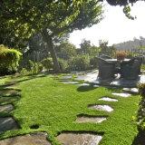Paisaje con el césped sin agua de la hierba artificial