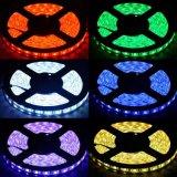 W/Watertproor de couleur RVB SMD5050 Bande Flexble LED pour l'hôtel/market/chambre/décoration de l'aéroport