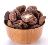 Polvo natural Lentinan el 10%, 30%&#160 de la seta de Shiitake del extracto; para el polvo del hongo de la sopa de seta
