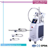 Corps gras Shapping Cryolipolysis geler la machine